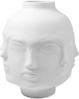 slider-face-vace.png